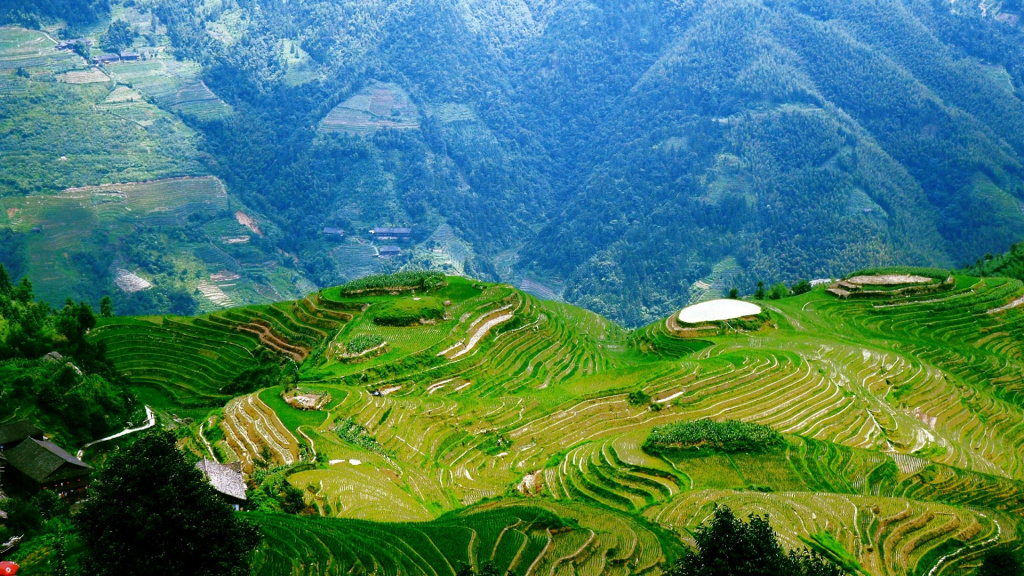 nature-landscapes_hdwallpaper_colorful-fields-in-yunnan-china_14474.jpg